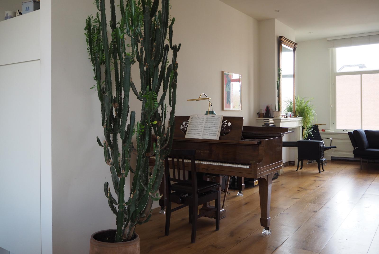jeroendenijs-piano-cactus-header